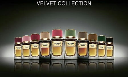 Dolce and Gabbana Velvet collection